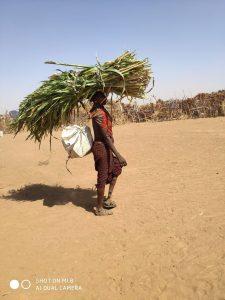 אתיופיה, עמק האומו